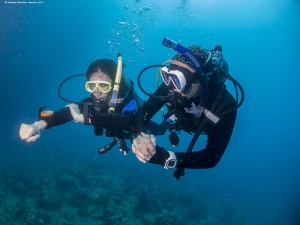 Learn to Dive with Seaventures Dive