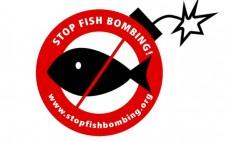 Stop Fish Bombing!