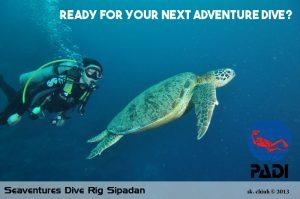 Seaventures Dive Rig Sipadan Diving PADI copy
