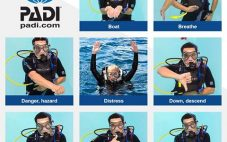 Divers' Sign Language