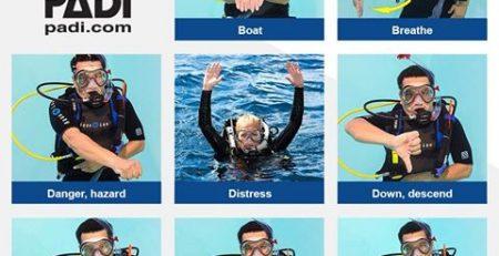 Scuba Divers Signage