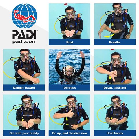 Divers' Sign Language