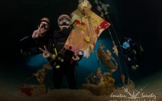 Unforgettable Sipadan Underwater