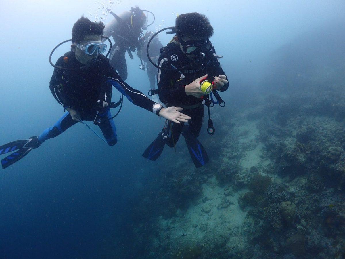 潜水 Seaventures