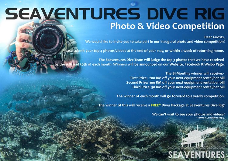 Photo & Video Competition Winners