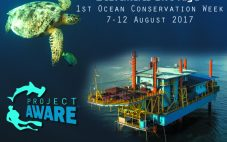 Ocean Conservation Week