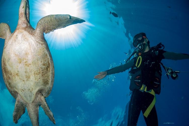 Dive Sipadan Malaysia